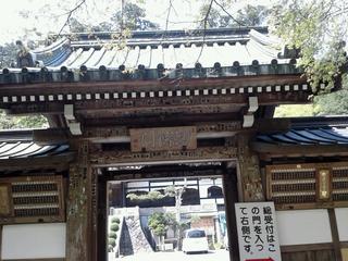 最乗寺の門
